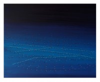 43x55cm acrylic oil MDF