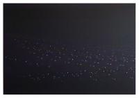 160x230cm acrylic oil canvas